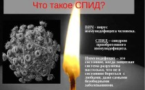 СПИД! Чем опасно данное вирусное заболевание