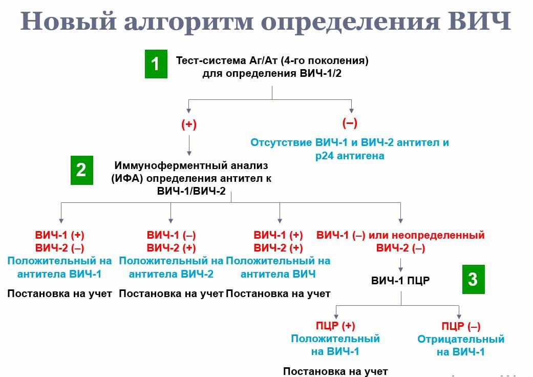 Пцр анализ донорской крови сколько действует медицинская справка для прав